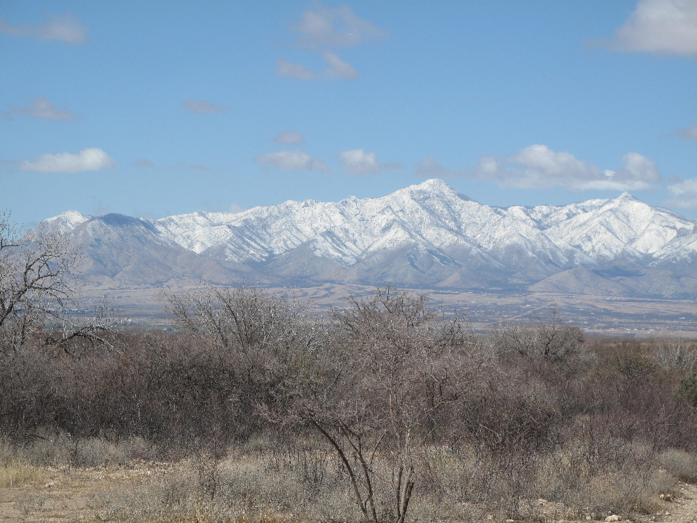 Huachuca Mountains from Deck